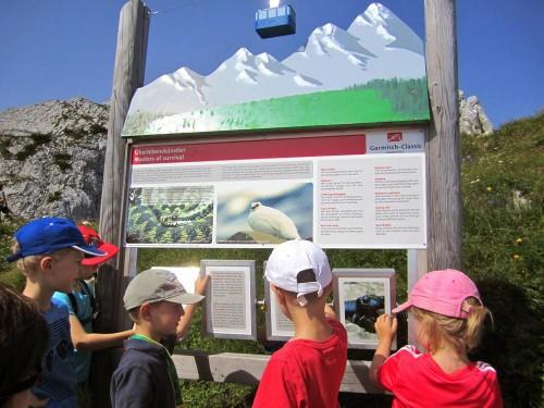 Schautafeln laden zum Spielen ein am Alpspitz-Gipfelerlebnisweg
