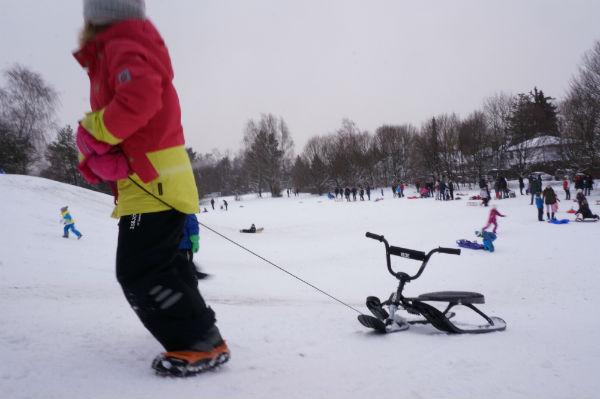 snowline_klein