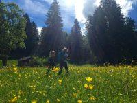 Zum Eckbauer: ein bayerischer Familienklassiker