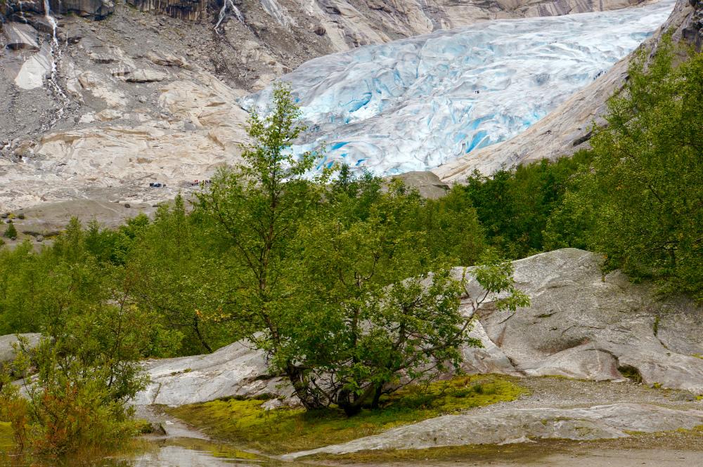 Gletscherwandern mit Kindern in Norwegen
